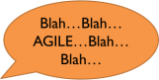 Agile experts say the stupidest things